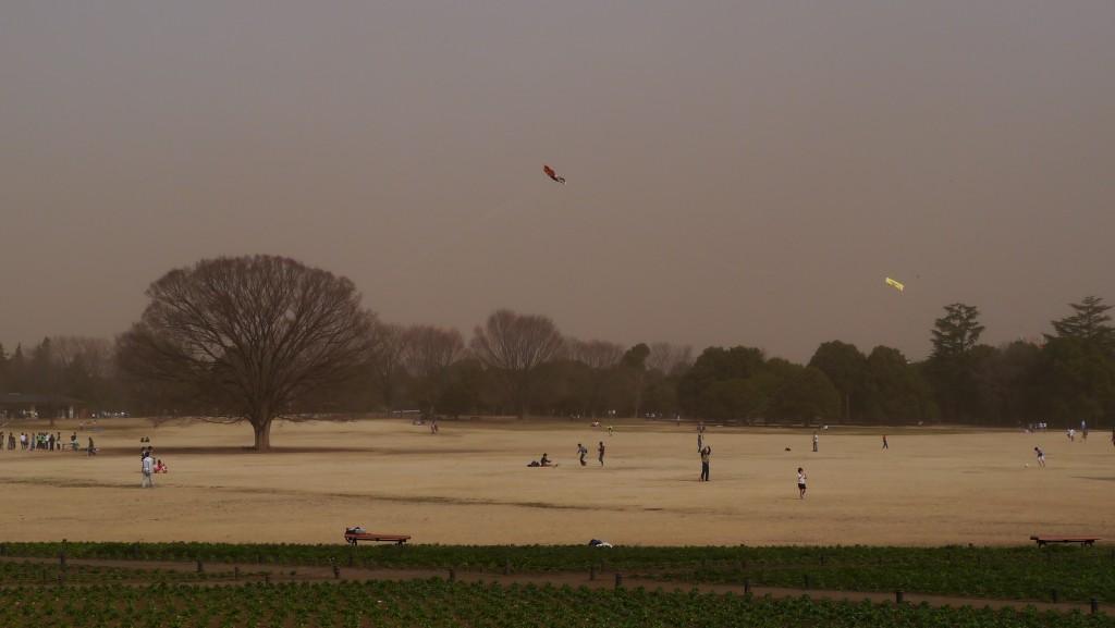 砂嵐の公園