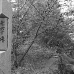 生田緑地にて